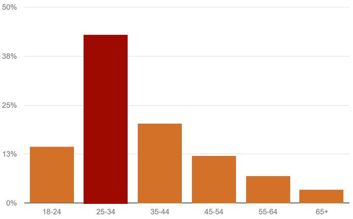 BaliSpirit Website Visitors by Age