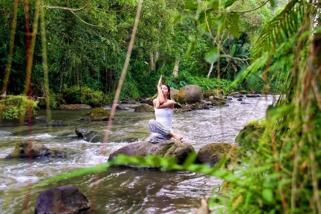 Blooming Lotus Yoga Retreats