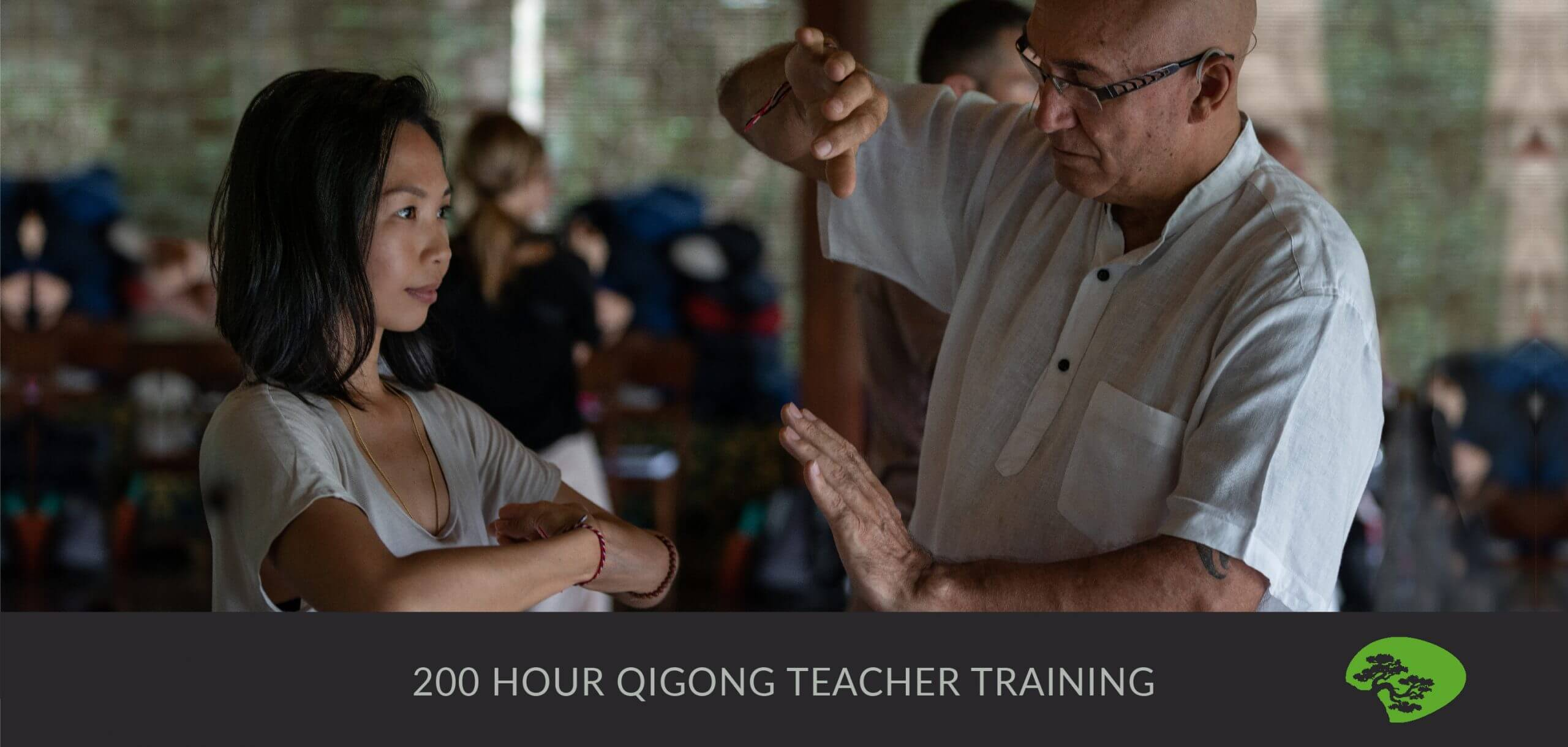 200 hour forest rock qigong teacher training