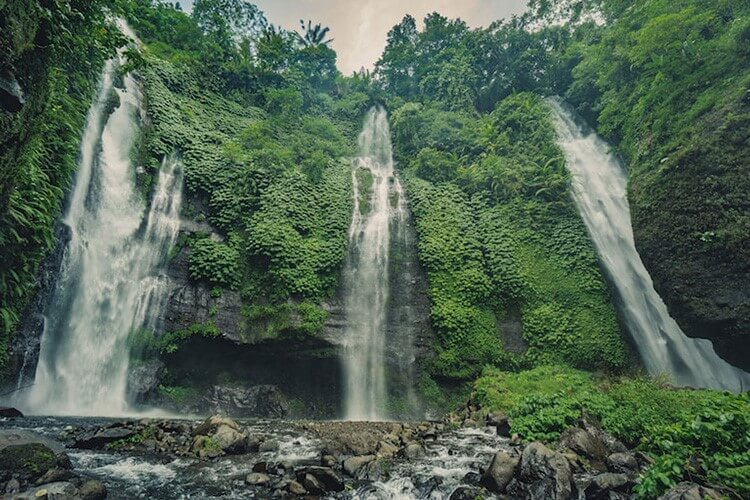 Best of Bali Highlights Nature Waterfall
