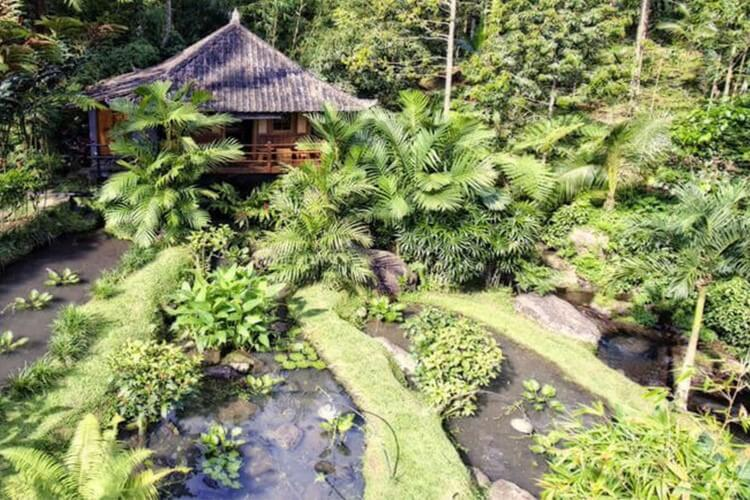 Best Ecolodges in Bali Bali Eco Stay
