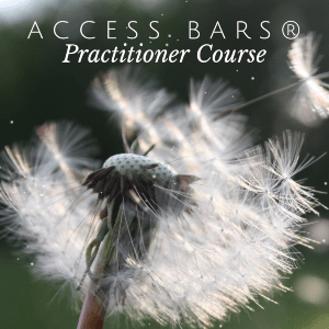 access bars® practitioner course