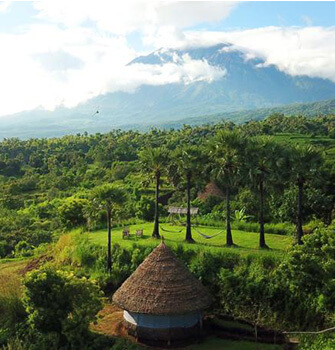 discover the best eco resorts in bali