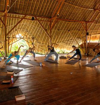 sannyas 200hr yoga teacher training