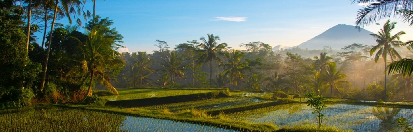 things to do in bali in july