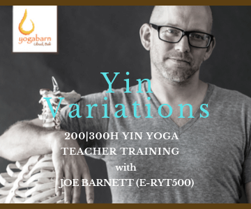 yin variations teacher training  with joe barnett